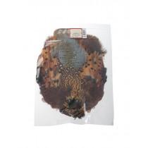Wapsi Ringneck Pheasant Skin Natural Cock